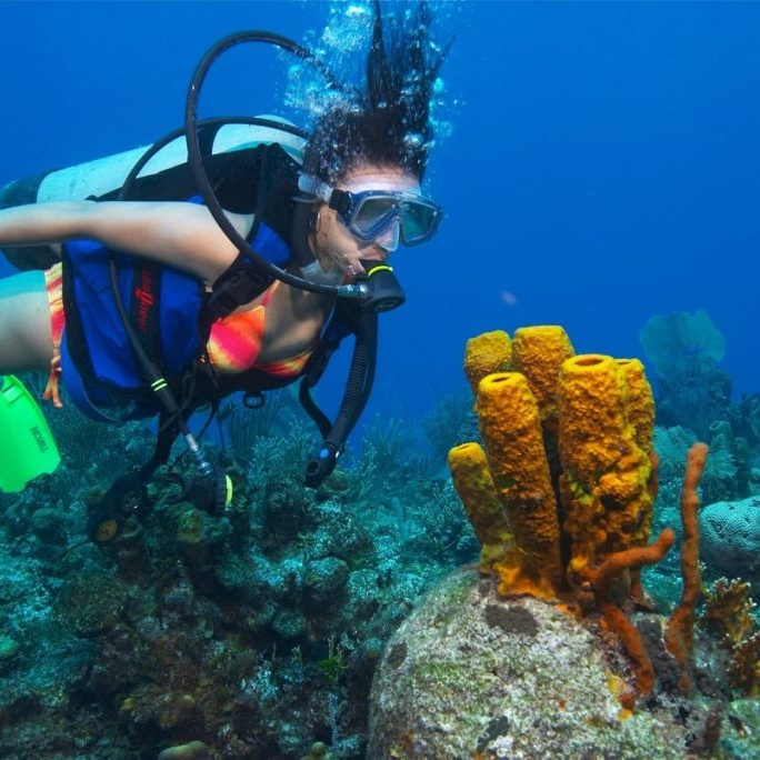Scuba-Diving-at-The-Steps