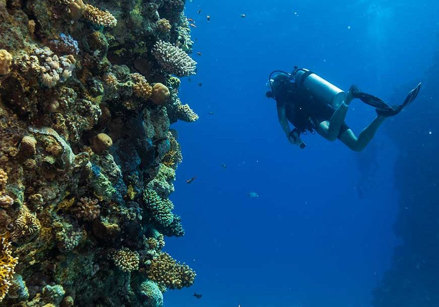 scuba diver(10)-870x812